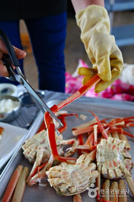 蔚珍竹蟹及紅蟹節(울진대게와 붉은대게축제)9