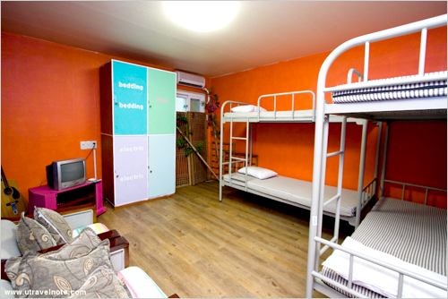 hostel backpackers: