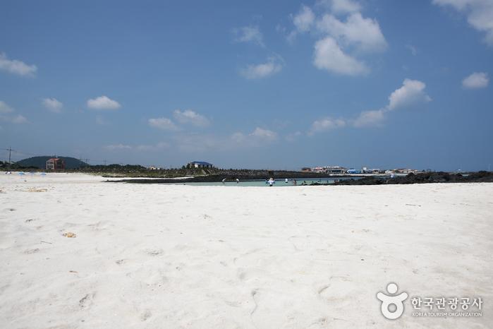 金寧Seongsegi海邊(金寧海水浴場)(김녕성세기해변 (김녕해수욕장))