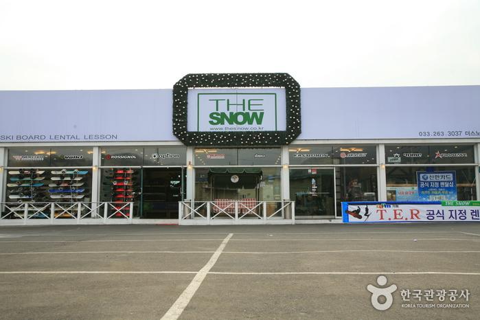 더스노우(the snow)