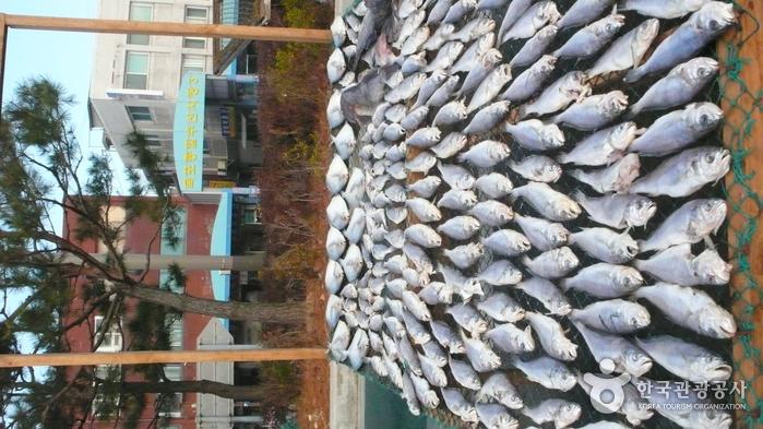 Рыбный рынок Мокпхо (목포 종합수산시장)