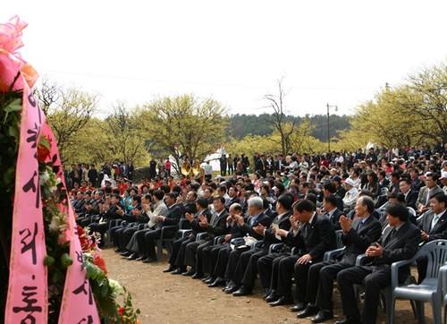Festival de las Flores de Sansuyu Baeksa en Icheon (이천 백사 산수유꽃축제)10