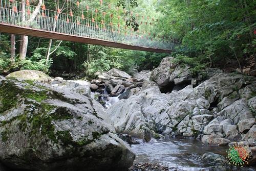 Mulhan Valley (물한계곡)