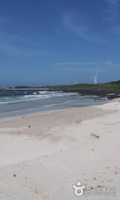 Strand Woljeongri (월정리해변 (월정리해수욕장))