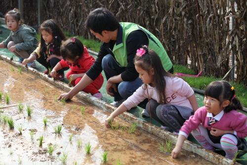 Icheon Rice Cultural Festival (이천쌀문화축제)