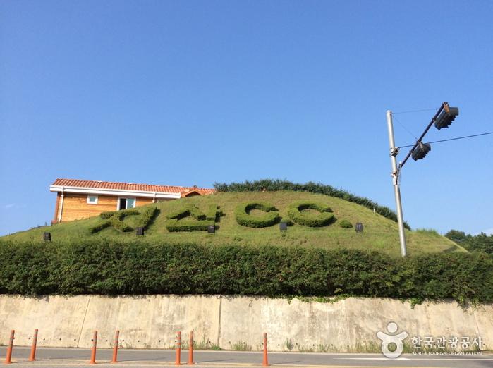 Jisan Country Club (지산 컨트리클럽)