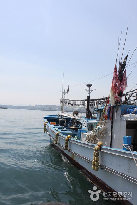 Mukho Port (묵호항)