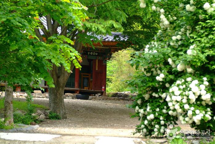 Einsiedelei Baengnyeonam (Cheongsong) (백련암-청송)