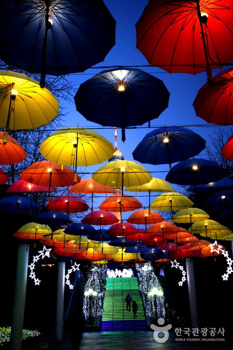 이월드 별빛축제 사진9