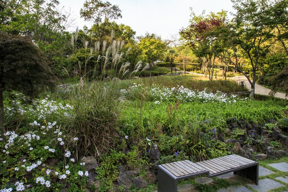 가을 풀꽃과 더불어 쉬어 가기 좋은 아차산생태공원