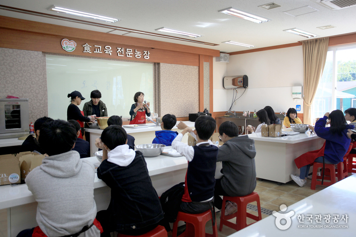 연천, '철새와 겨울나기' 힐링 여행