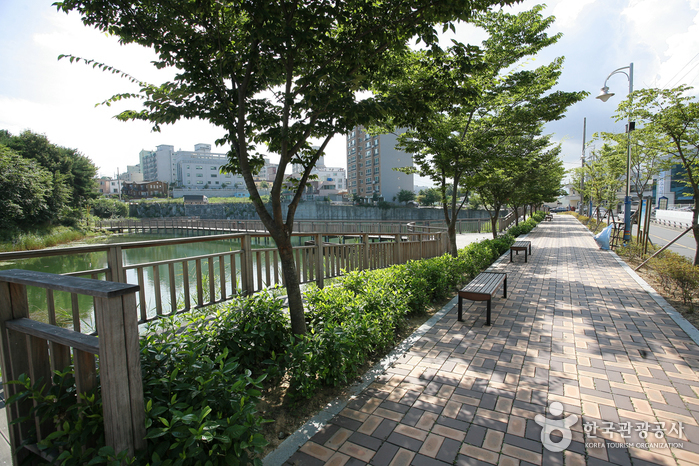 Sunmot Ecological Park (숯못 생태공원)