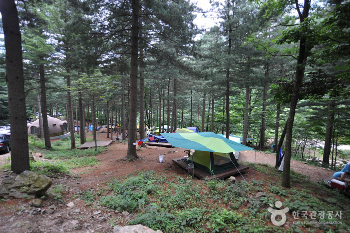 Deogyusan National Recreational Forest (국립 덕유산자연휴양림)