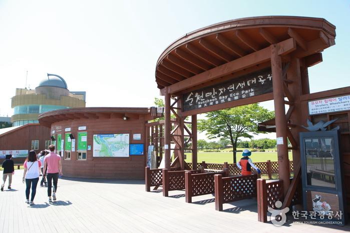순천만습지 (구, 순천만자연생태공원) 사진7