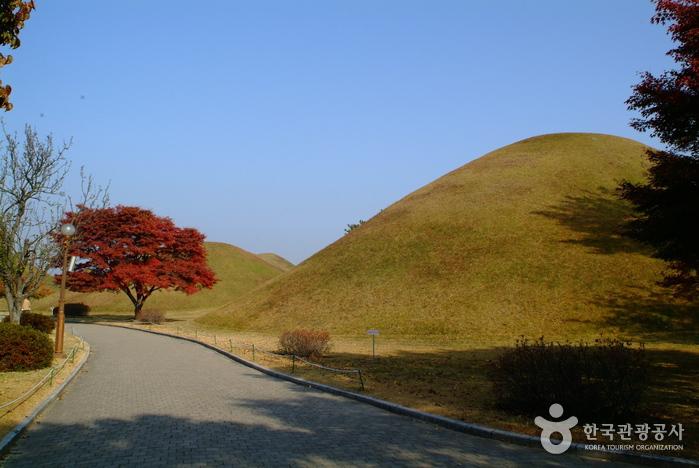 Daereungwon (Tombe Cheonmachong) (대릉원 (천...