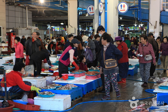 Pohang Jukdo Market (포항 죽도시장)
