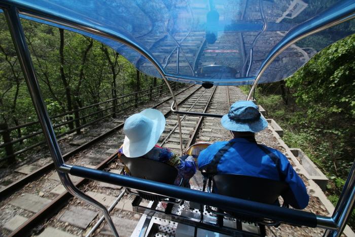 문경 철로자전거를 타고 봄을 달리다. 사진