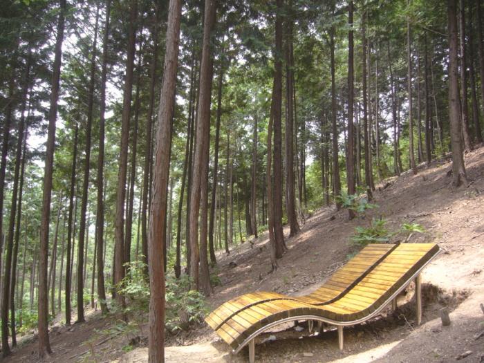 편백산림욕장
