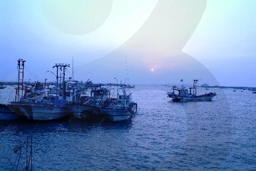 궁평항 사진5