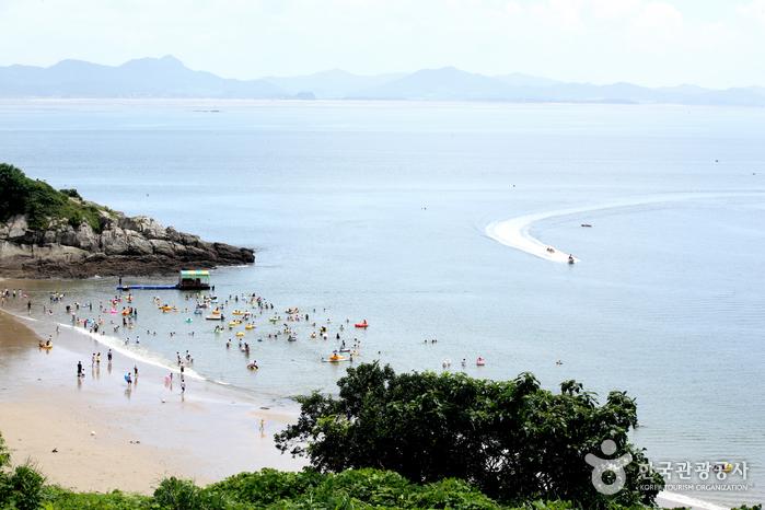 Mohang Beach (모항해수욕장)