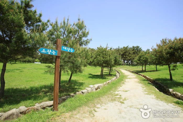 益山双陵(익산 쌍릉)