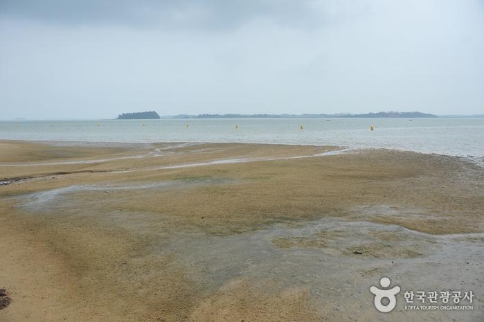 トンモリ海水浴場(톱머리 해수욕장)