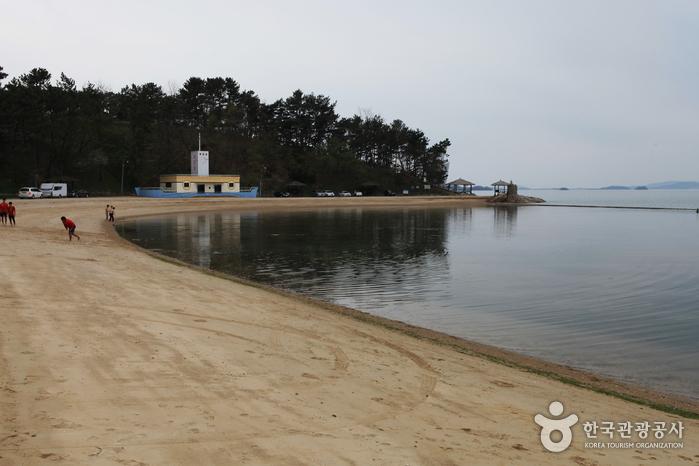 石頭海岸(돌머리해변)