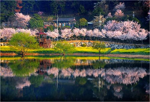 Seonam Lake Park (선암호수공원)
