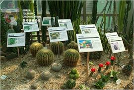 Ansan Botanical Garden (안산식물원)