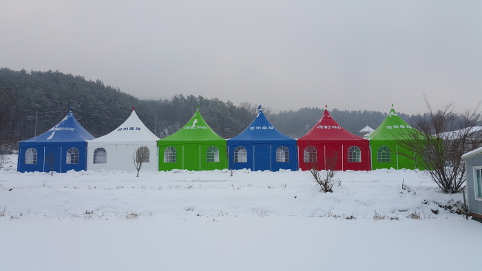 양평 대자연 빙어송어축제 2018 사진2