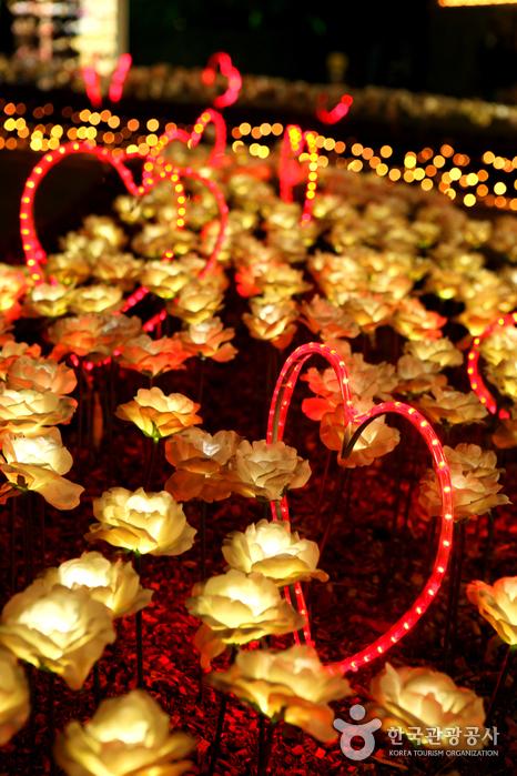 이월드 별빛축제