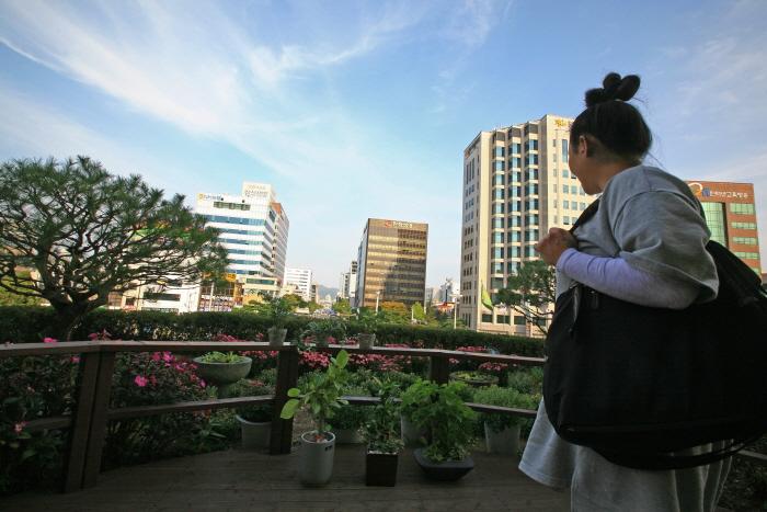충남의 중심이 된 대전 원도심 여행 사진