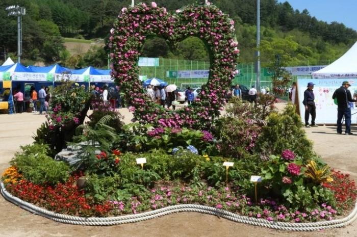 홍천 한우·산나물축제 2019