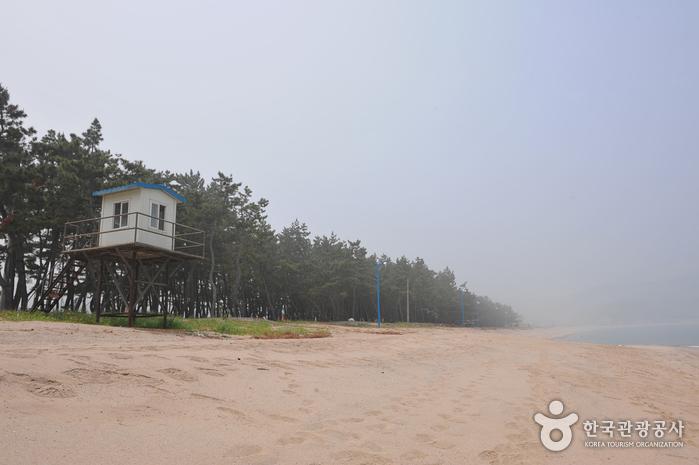 원평해변(원평해수욕장)