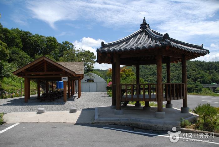 대전의 유교문화와 자신의 성씨 알 수 있는 효친 사상