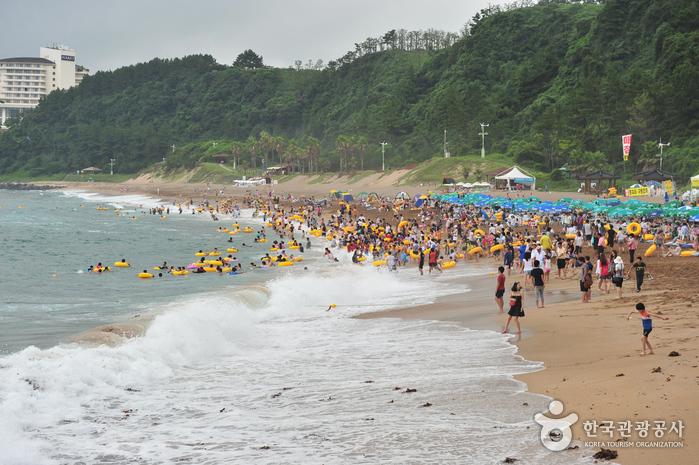 中文・穡達海岸(중문·색달 해변)