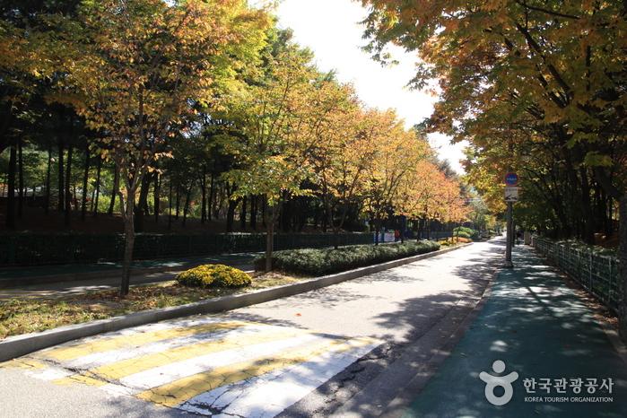 봉화산(서울)