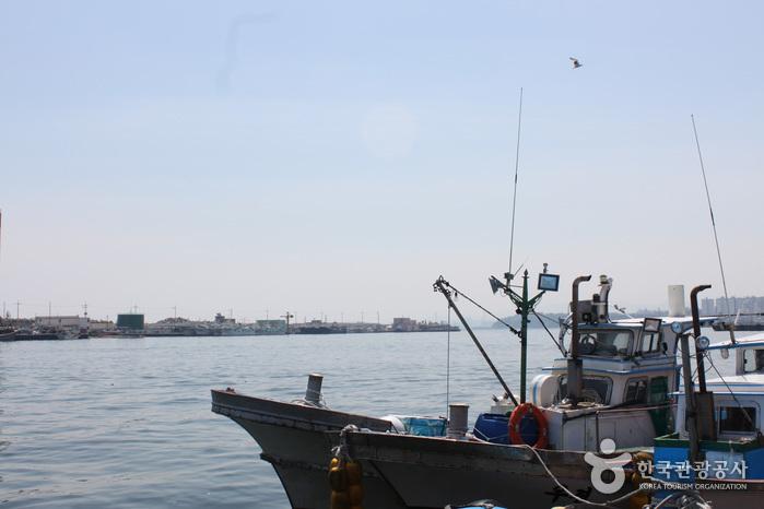 Hafen Mukhohang (묵호항)
