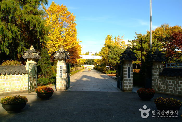 Dosan Park (도산공원)