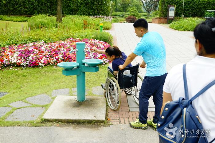 휠체어에 탄 여성이 식수대에서 물을 먹는 모습