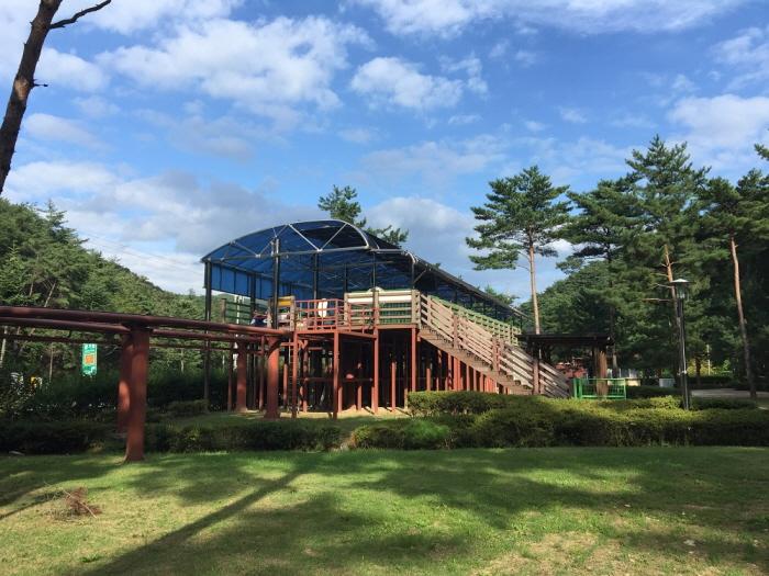 솔향공원 스카이바이크
