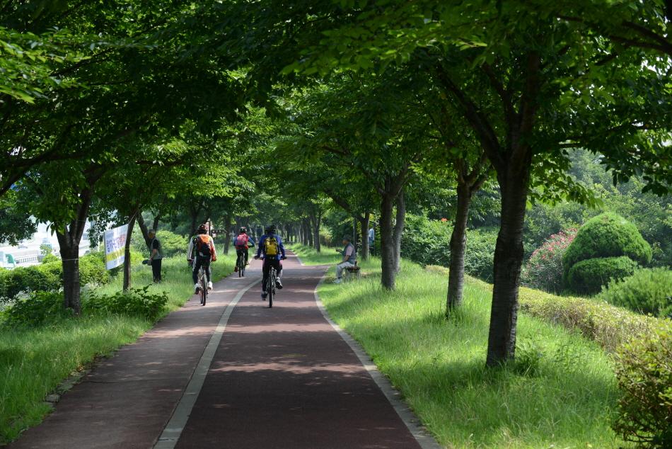 자전거가 강둑길을 지나가고 있다.
