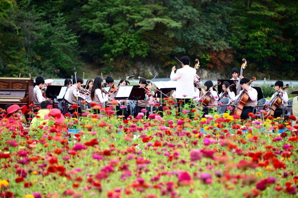 축제장에서 연주하는 청소년 오케스트라