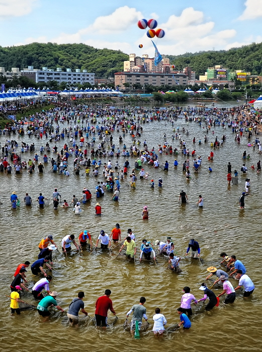 Bonghwa Euneo Festival (봉화은어축제)