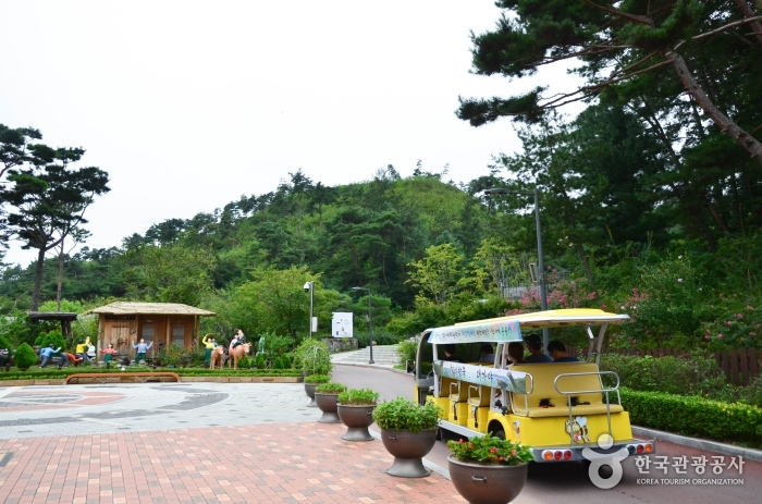 관광지 내에서 운행하는 전기차