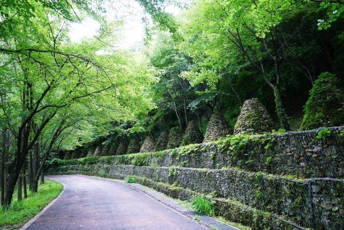 上所洞 森林浴場(상소동 산림욕장)