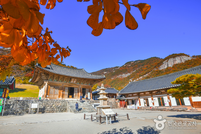 Tempel Naesosa (내소사 (부안))