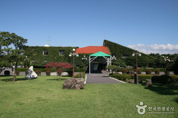 Daeyoo Land (대유랜드-대유식당)