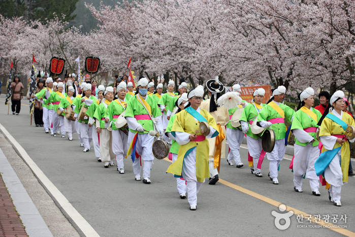 Yeongam Wangin Culture Festival (영암왕인문화축제)