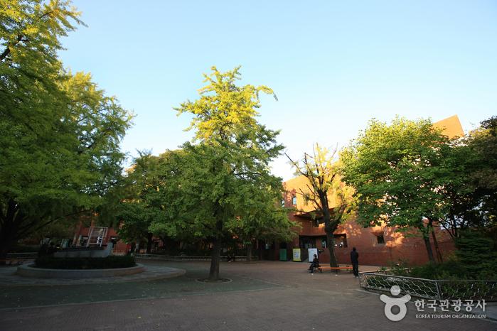Marronier-Park (마로니에공원)